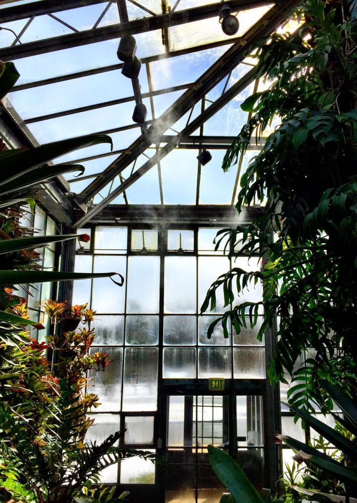 Greenhouse at Longwood Gardens