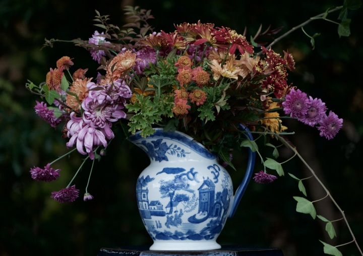heirloom-mums-in-blue-and-white-pitcher
