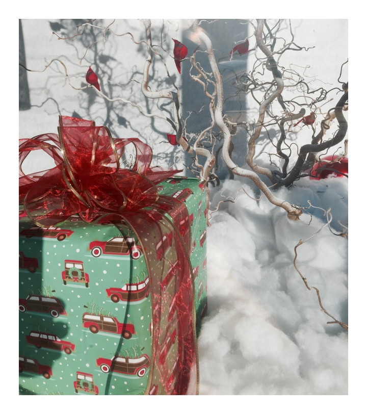 christmas-package-in-car-wrapping-paper_onthresholds