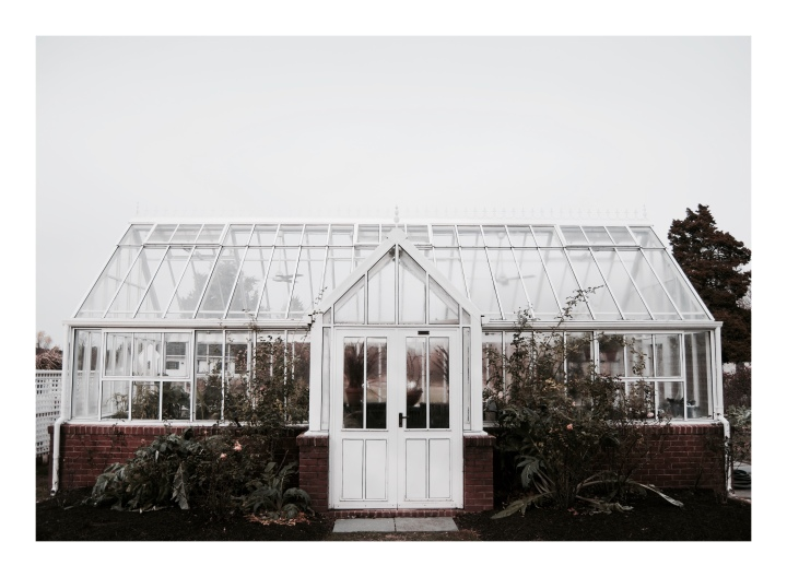 greenhouse-at-the-inn-in-st-michaels