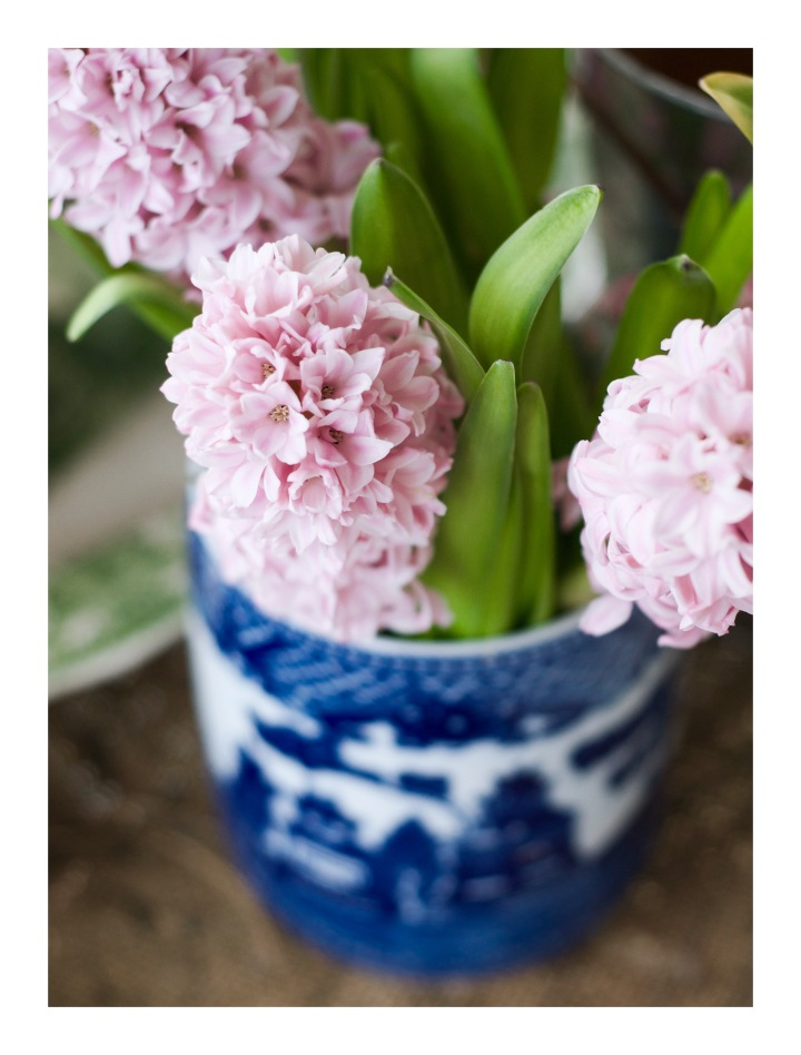 pink-hyacinth-in-blue-and-white-crock_onthresolds