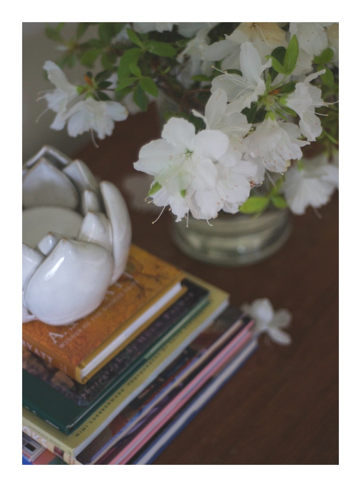 onthresholds_white azaleas and books
