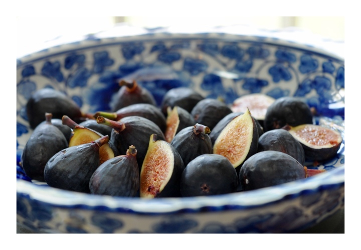 onthresholds_figs in white bowl