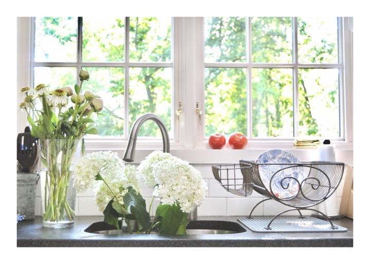 onthresholds_flower prep in sink