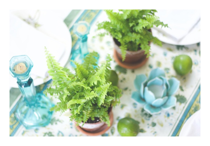 onthresholds_table setting with ferns and limesFullSizeRender 16