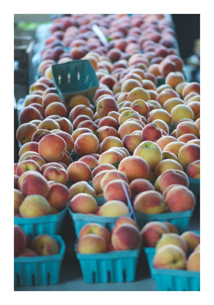 Onthresholds_peaches at FMMG_3060.JPG
